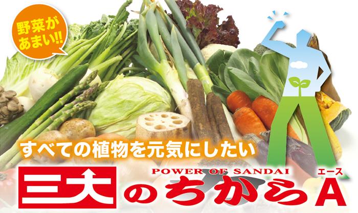 肥料「三大のちからA(エース)」
